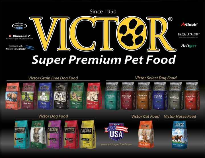Every dog's favorite food!